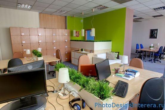 Как организовать удобный и современный офис с цветами?