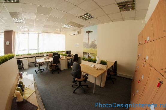 Как организовать удобный и современный рабочий офис с цветами?